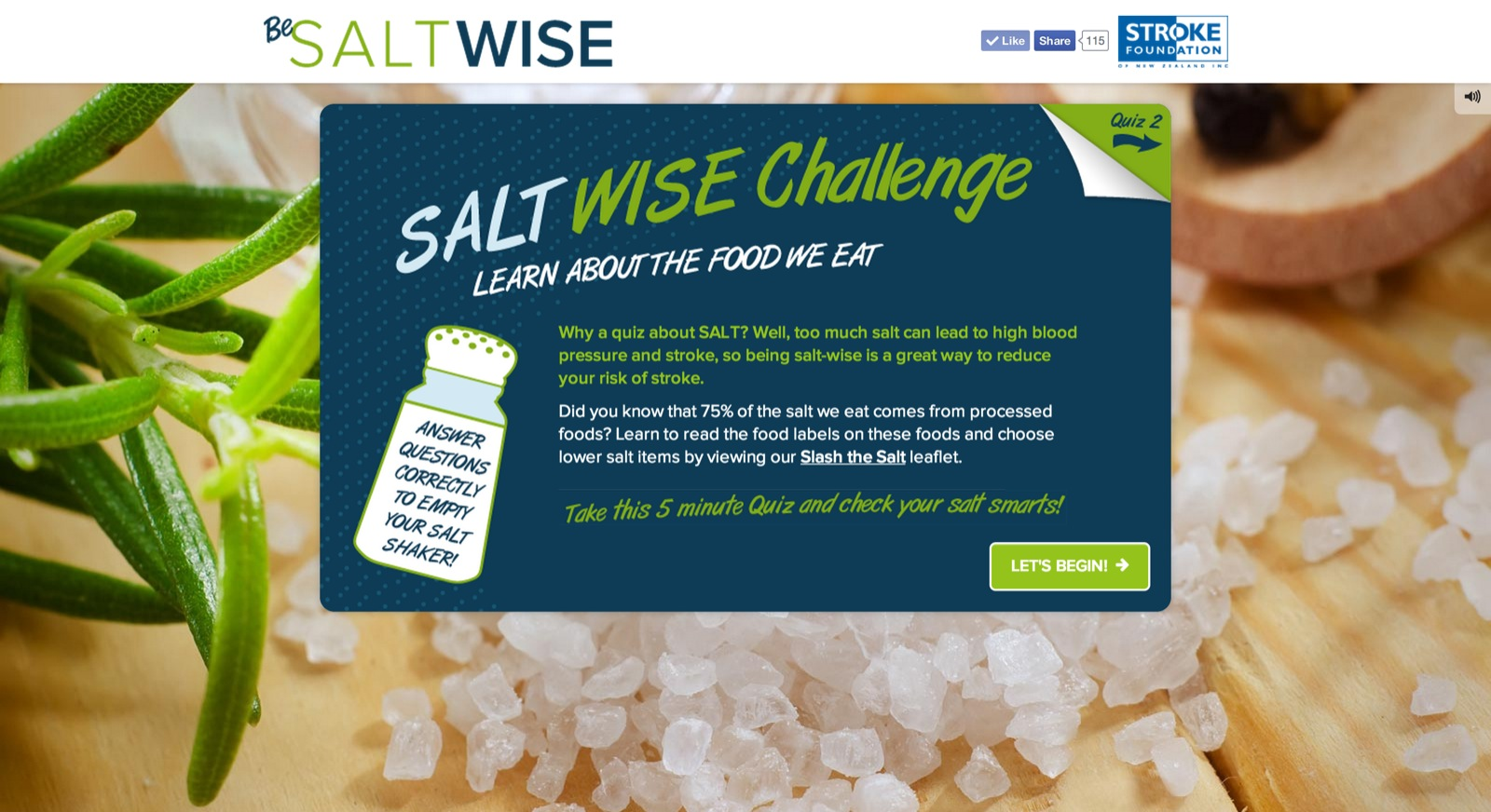 Salt Wise Home Screen